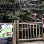 【神田彩恵プロフィール】食べること、走ることが好きな栄養学生